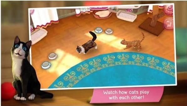 Game Kucing Angela Download Game Kucing