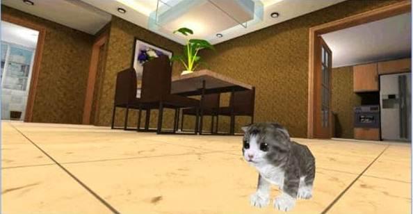 Game Kucing bicara permainan kucing anggora