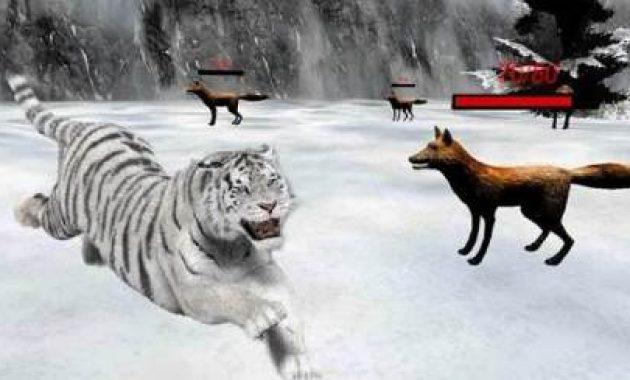 Game Singa Vs Harimau Singa Vs Harimau Sampai Mati Asli Singa Vs Singa