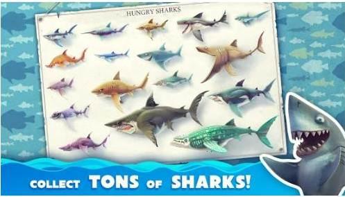 games memancing ikan hiu besar di laut
